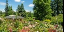 Cvjetni vrt